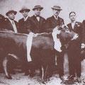 Anni '40 La tradizionale offerta del vitello da mettere all'incanto durante i festeggiamenti di S. Francesco. Il 3° da sx Giosuè Donadio, il 4° Vincenzo Marino(segretario comunale) e il 5° il dott. Sangregorio