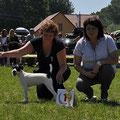Calypso von Mironovshof BIS puppy