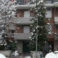 affittacamere La Bertola - Villa magnolia in inverno
