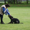 12 mei 2012 - Qby vom Grubenländer Schupo tijdens training