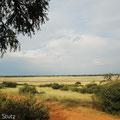 KNP: Aussicht von der Campsite Mpayathutlwa
