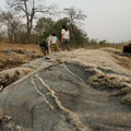 Selous GR: Walking Safari mit unserem Guide