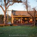 KNP: Camp Rhino Walking Safaris