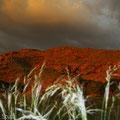 Namtib Biosphere: Aussicht von unserer Campsite