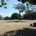 3 Nächte Camping im Mana Pools Nationalpark, direkt am Sambesi