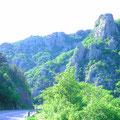 Im Velebit Gebirge