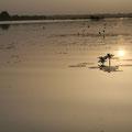 lever de soleil à Tengrela
