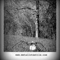 MetalloTextile, projet d'art de Natalie Magnin et David Vanorbeek