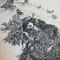 A nest Ⅲ