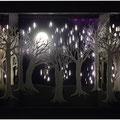 Forêt d'hiver (sans éclairage ambiant)