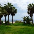 grüne Oasen im Süden der Insel