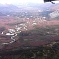 Bewaldetes Tal des Chandalar River