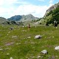 Im albanisch-montenegrinischen Grenzgebiet