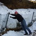 auch der Zaun hat im Winter gelitten