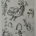W.005  uit LETTRE A MARC CHAGALL, PC.076 (1969) 22,2 x 14,5 cm (40 x 30 cm)