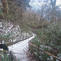 登山道の雪はうっすら。
