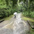 くろんど園地内の道が川になっていた日でした(;^_^A