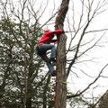 木登りにも挑戦(大)