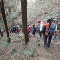 巨石巡りの下り:木立を抜けて・・・