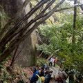 鏡岩というこの界隈一番の巨石