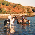 Apache, Stephan, Bruce and my friend Padraig at Lough Hyne, West Cork, Ireland.