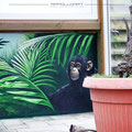 Karibik Schwimmbad Wandmalerei Feuchtzelle Wasser