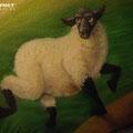 Berlin Rio Tokio wir gestalten für Sie Ihren Wohnbereich Schaff Schaf