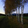...am Jakobsweg nach St. Jakob im Walde, ein Blick zurück nach Wenigzell