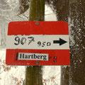 jetzt am Weg 907 nach Hartberg