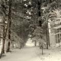 """schöne """"Winterlandschaft"""""""
