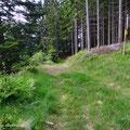"""Die Weggabelung vor dem Gehöft """"Stockhofer"""", der Markierungspfahl wurde wieder versetzt, nun wieder oberhalb vom Originalweg."""