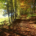 ....schöne Herbstlandschaft