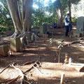 西徳寺境内の裏山にある会津藩士の墓11基 林重敬など