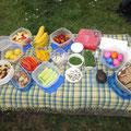 Unser gesundes Picknick
