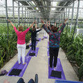 Yoga introductie - Spirituele beurs 4-5-13