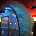 Installation Dassault Systèmes - Exposition Universelle Aichi 2005