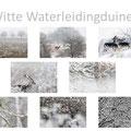 Serie: Witte Waterleidingduinen - Fotograaf Pieter van Dijk