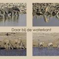 Serie: Daar bij de waterkant - Fotograaf Petra van Boordt