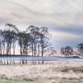 Landschap met nevel - Fotograaf: Roderik Sorbi