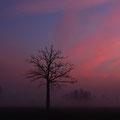 Zonsopkomst bij Cothen - Fotograaf: Eric Gibcus