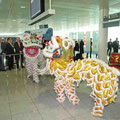 Flughafen München 2010 / 1. Direktflug Germany - Singapore