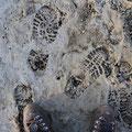 コンクリートに刻まれた足跡のよう