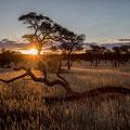Sonnenuntergang auf der Intu Afrika Zebra Lodge