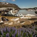 Svinafellsjökull am Skaftafell-NP