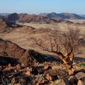 Namib Naukluft II