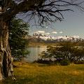 Torres NP V