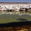 Salar de Atacama I