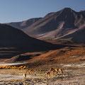 Siloli-Wüste II