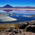 Laguna Colorada V