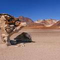 Arbol de Piedra III